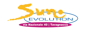 Sun Evolution